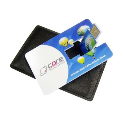 USB Wallet Pouch