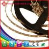 New design 30 SMD/M smd led strip 3528 from Ledworker