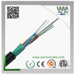 Fiber Optic Cable GYTS-24B1