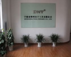 Dongning Инструменты (Нинбо) Co., Ltd