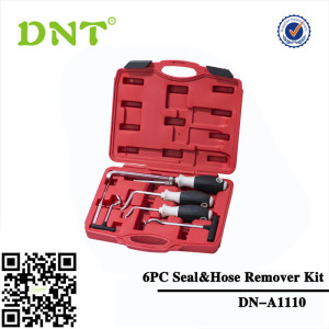 Auto Seal& Hose Remover Tool Kit 6PC