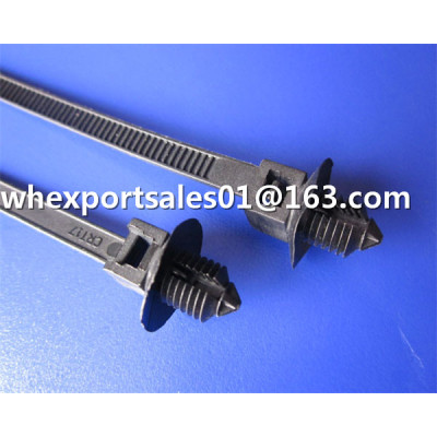 Screw Head Nylon Cable Ties mould