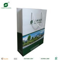CUSTOM PRINT PAPER BAG FP472728