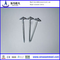 Hot sales! China factory supply high quality galvanized umbrella head roofing nails