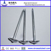 BWG galvanized umbrella head smooth shank roofing nails