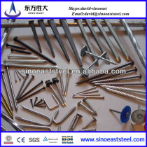 galvanized square head twisted shank roofing nails factory in Tianjin