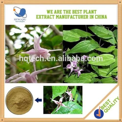 Wholesale top grade epimedium extract icariin 10 herb