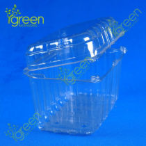 disposable plastic rice box