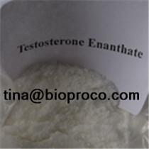TestosteroneEnanthate