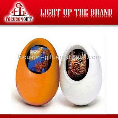 Novetly egg shape Festival Gift fancy digital photo frame