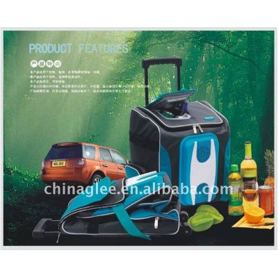 cooling and heating car refrigerator XT-1101A