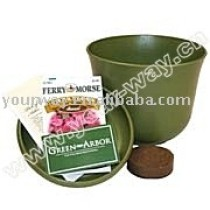 Mini flower(bio-friendly pot),can flower,promotional gift