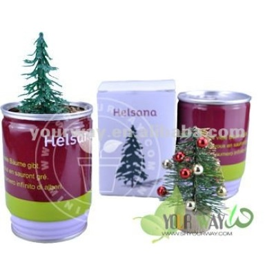 Christmas Tree In A Can