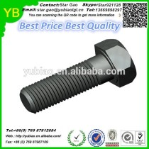 Black derlin plastic/POM screws in hot sales,high quality hex head screw