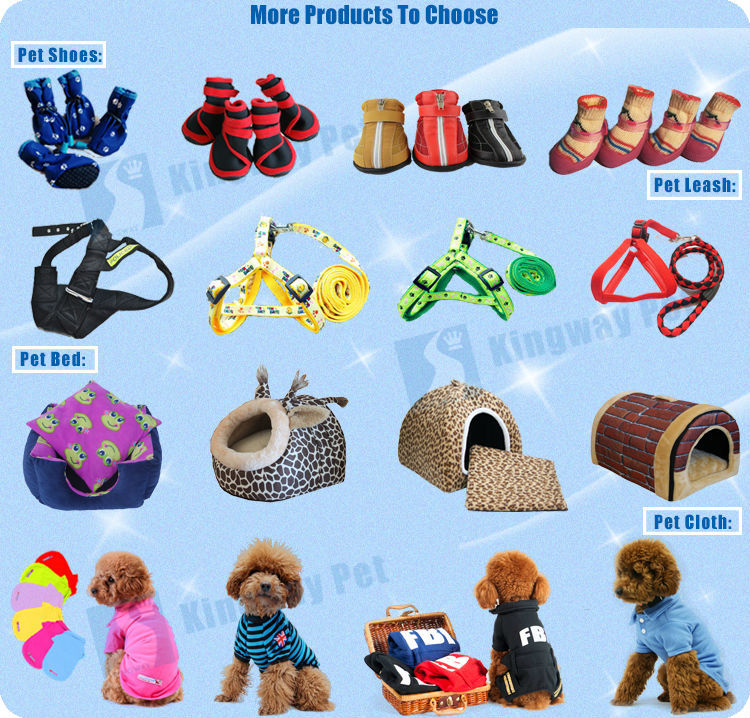 Custom design amazing pet products