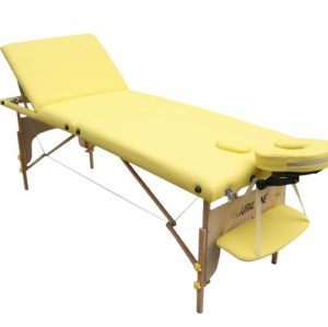 M016     Economic massage table