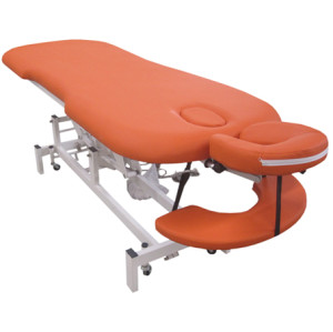 ET01    H-ROOT  Electric Treatment Table