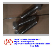 310 stainless steel hex bolt