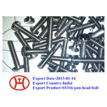 316 pan head bolt