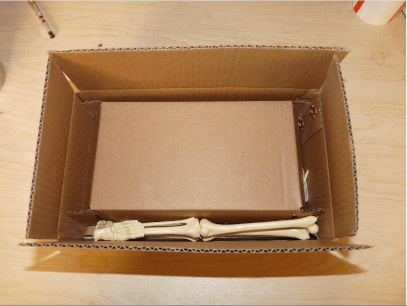 medical model Packing-5