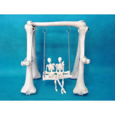 PVC SWING COMBINATION OF HIGH-QUALITY HUMAN SKELETON BONE SURGERY SIMULATION MEDICAL TEACHING BONES-GASEN-RZFZG001
