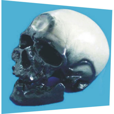 CROMAGNON MAN SKULL TEACHING HUMAN SKELETON MEDICAL SIMULATION HUMAN SKULL SIMULATION HEAD MODEL CROWE DOOR ANREN SKULL -GASEN-RZGL041