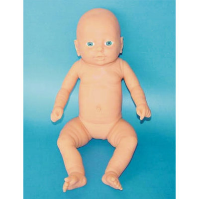 ENVIRONMENTAL PVC MATERIAL HUMAN REPRODUCTIVE SYSTEM MODEL HUMAN REPRODUCTIVE SYSTEM MODEL MEDICAL ANATOMICAL FEMALE BABY MODEL -GASEN-RZMN003