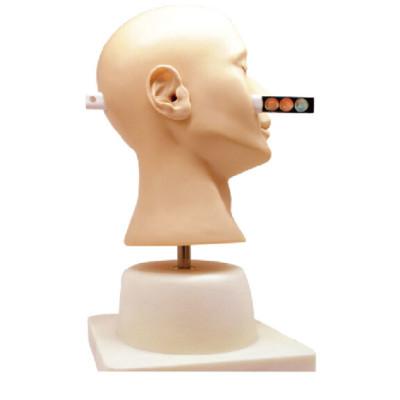 ADVANCED EAR DIAGNOSTIC SIMULATOR GASEN-LV41