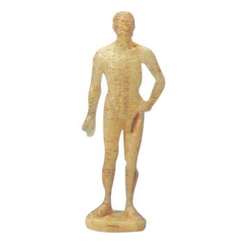 HUMAN ACUPUNCTURE MANIKIN (MALE, 50CM) GASEN-C00007