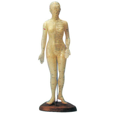 HUMAN ACUPUNCTURE MANIKIN (FEMALE, 48CM) GASEN-C00008