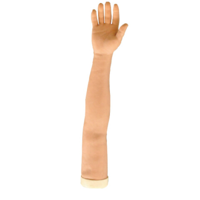 ACUPUNCTURE ARM MODEL GASEN-C00018