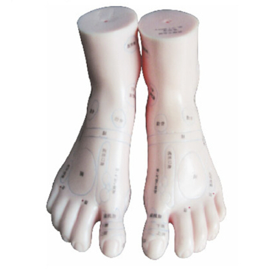 FOOT MASSAGE MODEL (20CM) GASEN-C00016-1