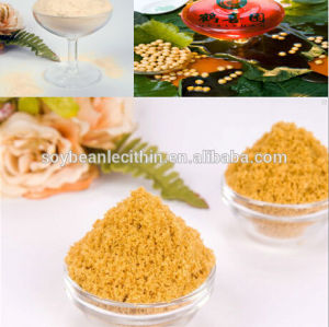 Soybean lecithin or phospholipid powder