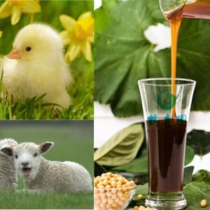 Soya Lecithin as Poultry broiler feed