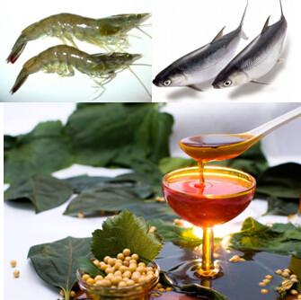 soya lecithin decolored liquid