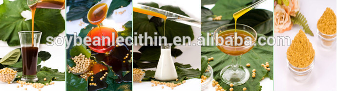 Modified water soluble Soy Lecithin