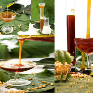 non gmo soya standard liquid lecithin