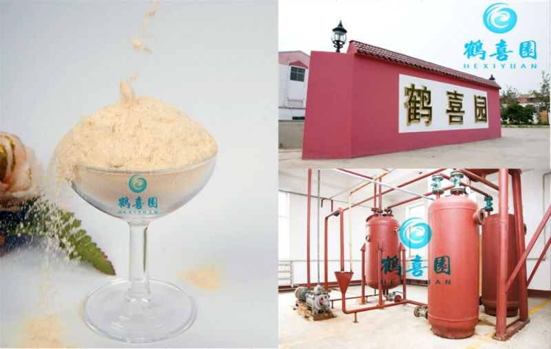 soya lecithin powder for drugs