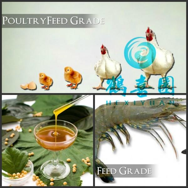 Lecitina de para aqua, Las aves de corral, De pollos de engorde aditivo para la alimentación