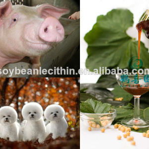 soya lecithin natural-sourced pig feed ingredient