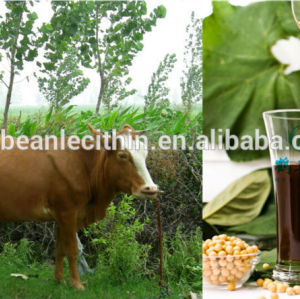 animal nutritional products soya lecithin
