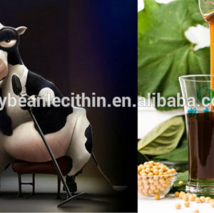 non gmo soya lecithin acts as cattle feed energy supplies