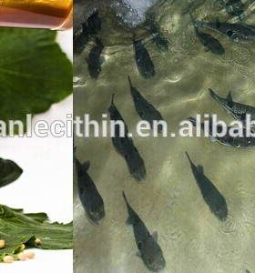 soy lecithin liquid as a mixing aid for fish