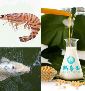 Soya lecithin as fish feed ingredients