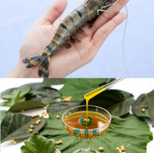 Soluble dans l'eau de lécithine de soja pour l'alimentation ingrédient
