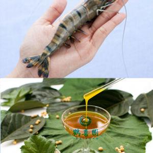 Solúveis em água soja lecitina para a aquicultura espécies alimenta