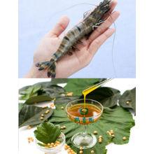 Soluble en agua del lecitina de para acuicultura especies alimenta la