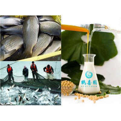 soya lecithin organic fish feed ingredients
