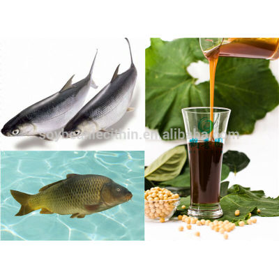 soya lecithin for Fish feed ingredients