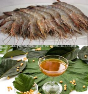 SOYA LECITHIN for granule aqua feeds